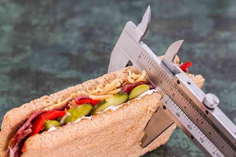 dieta ricca di grassi